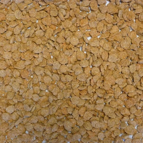 Extruded Wheat Orange
