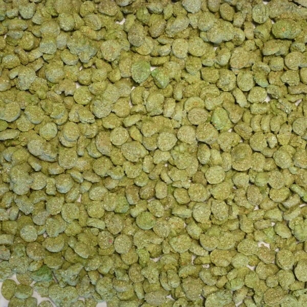 Extruded Wheat Green