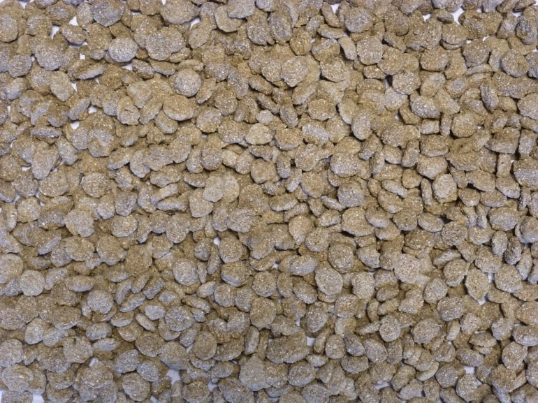 Extruded Wheat with Lucerne